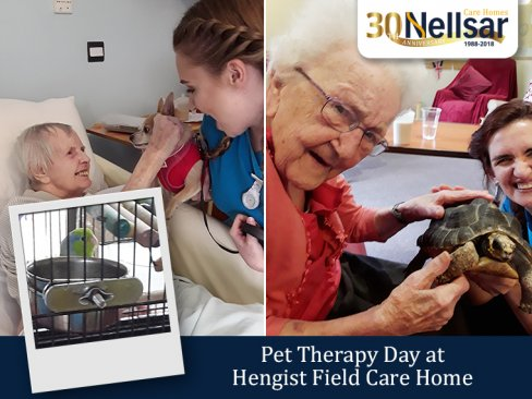 Pet Therapy Day at Hengist Field Care Home