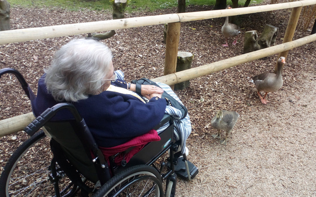 Loose Valley Care Home residents visit Leeds Castle