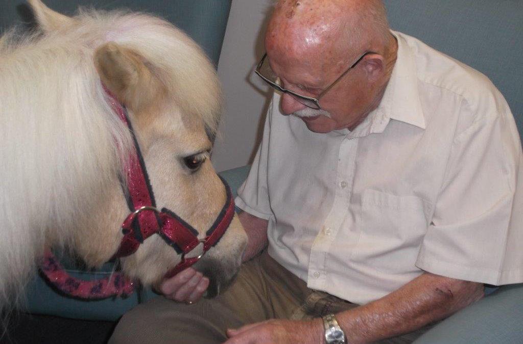 Pinky the pony visits St Winifreds Care Home
