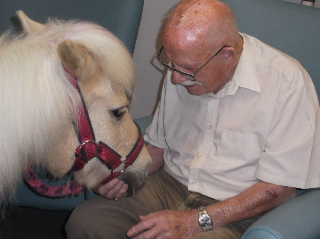Pinky the pony visits St Winifreds Care Home