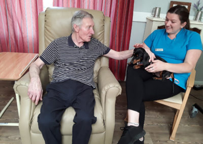 A male Abbotsleigh Care Home resident stroking sausage dog puppy with Poppy the Activities Coordinator