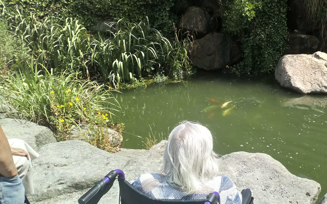 Loose Valley residents have fish farm fun