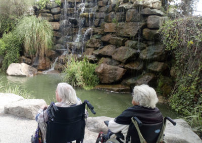 Residents in wheelchairs admiring a waterfall and pond with koi carp
