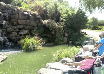 Residents in wheelchairs admiring a pond with koi carp