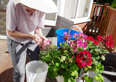 Abbotsleigh Care Home lady pots pretty plants in a basket outside in the garden