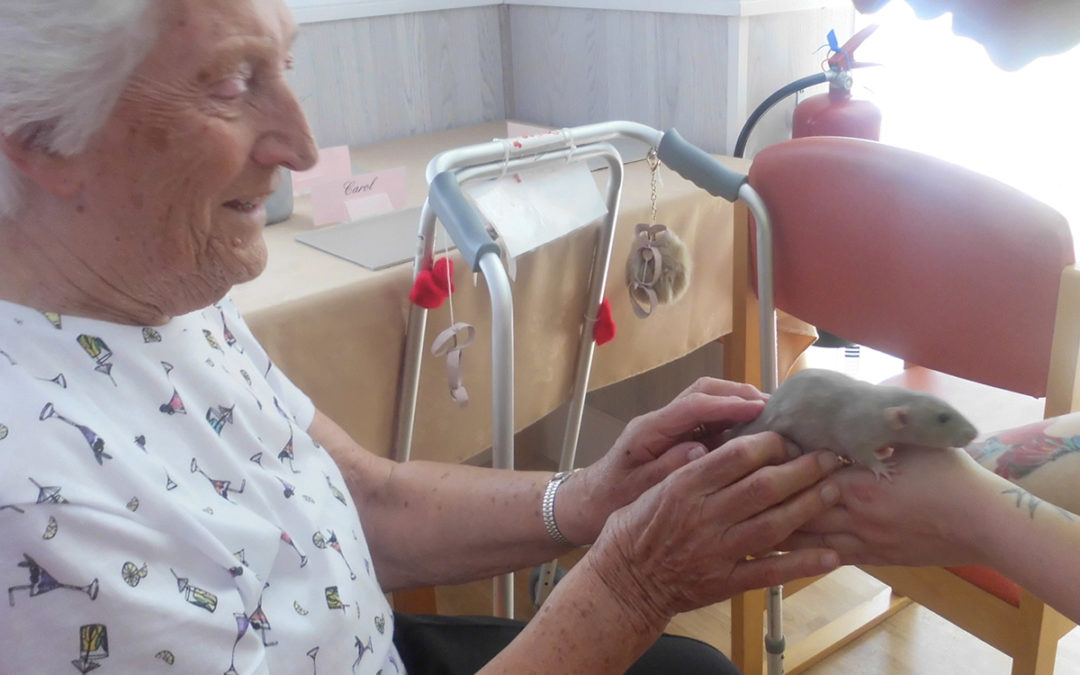 Exotic Pets Therapy at Woodstock Residential Care Home
