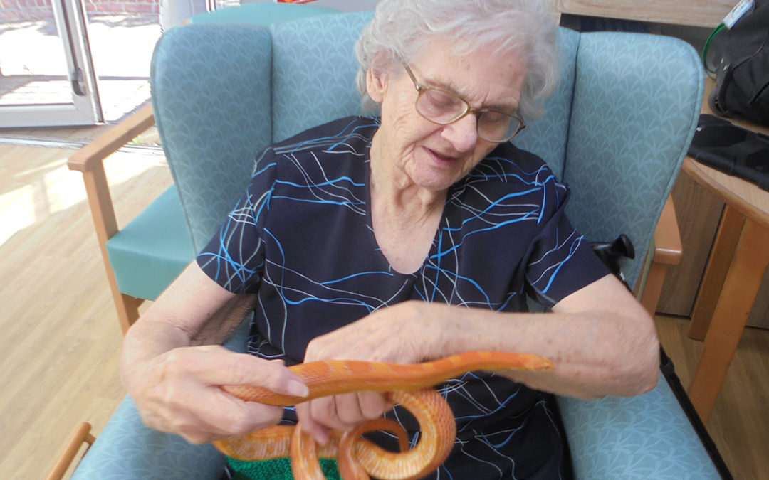 Creepy crawlies come to The Old Downs Residential Care Home