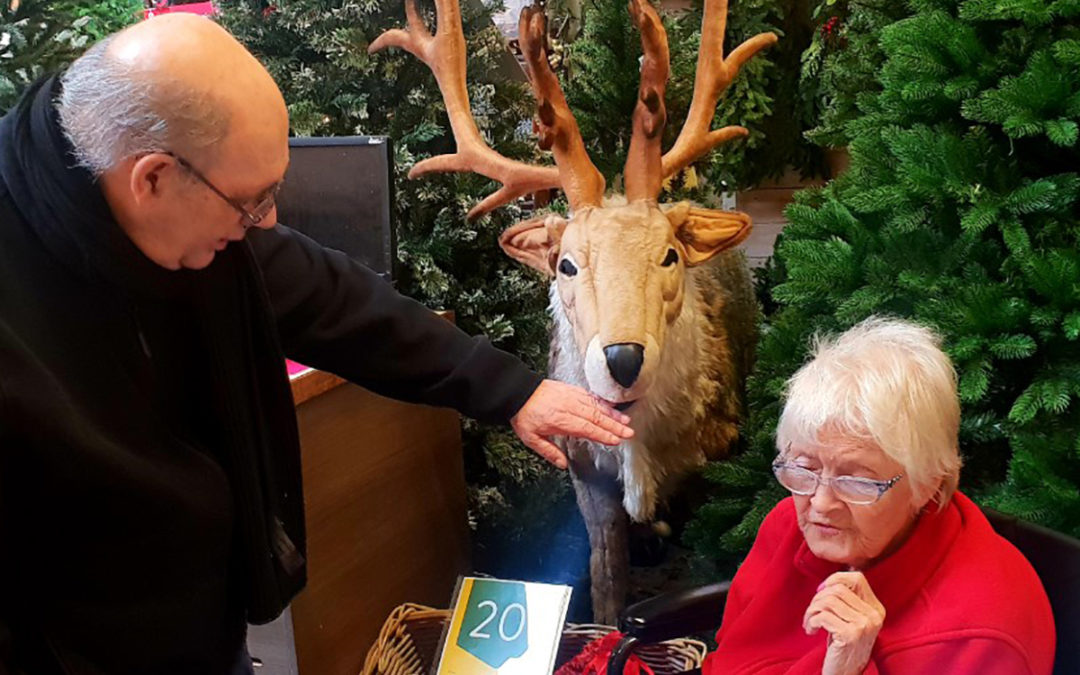 Festive outing to Dobbies Garden Centre at Lukestone Care Home