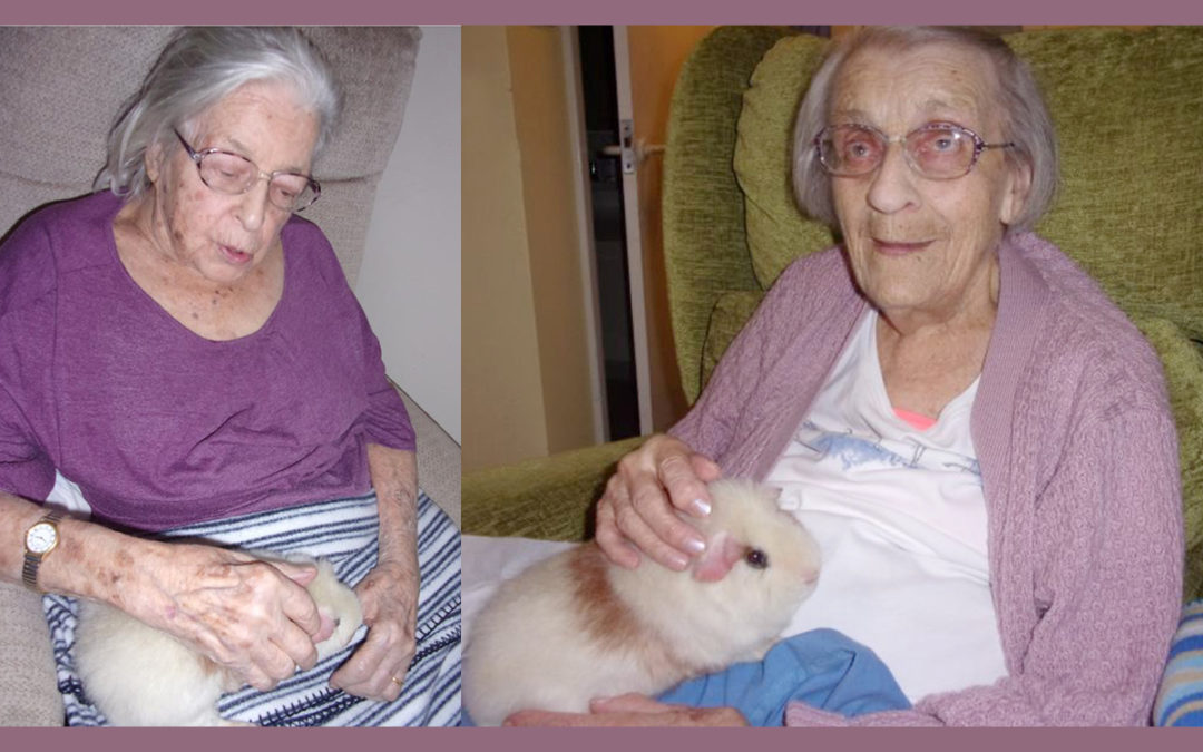 Loose Valley Care Home loves Ronnie