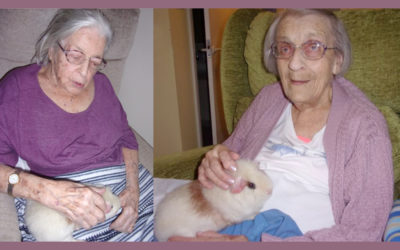Loose Valley Care Home lady residents cuddling Ronnie their resident Guinea pig
